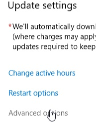 step 3 for manually update Windows