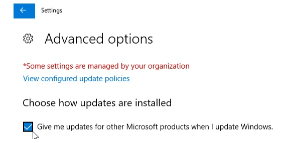 step 4 for manually update Windows