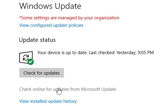 step 5 for manually update Windows